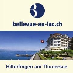 jobs interlaken jobs hotel stellenmarkt f r hotellerie und gastronomie in der schweiz. Black Bedroom Furniture Sets. Home Design Ideas