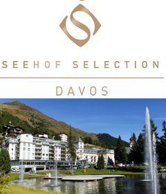 jobs stellen hotel seehof davos jobs hotel stellenmarkt f r hotellerie und gastronomie. Black Bedroom Furniture Sets. Home Design Ideas